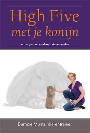 High Five met je konijn Goede boeken over konijnen